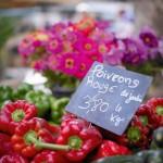Lunch in Provence - Fiori