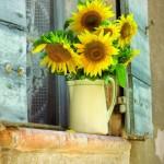 Lunch in Provence - Fiori gialli