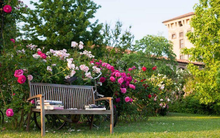 I segreti delle rose a castello quistini shabby chic for Corso progettazione giardini