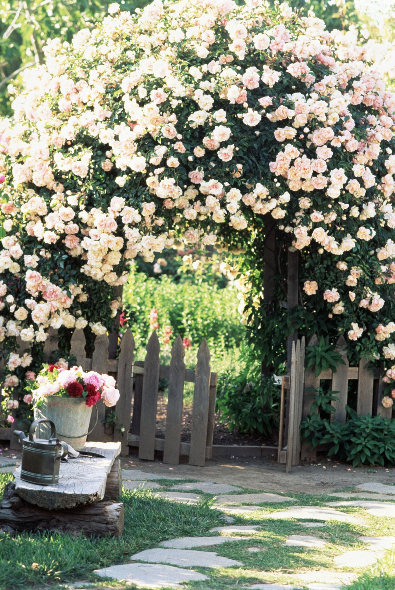 come creare un giardino in stile cottage shabby chic
