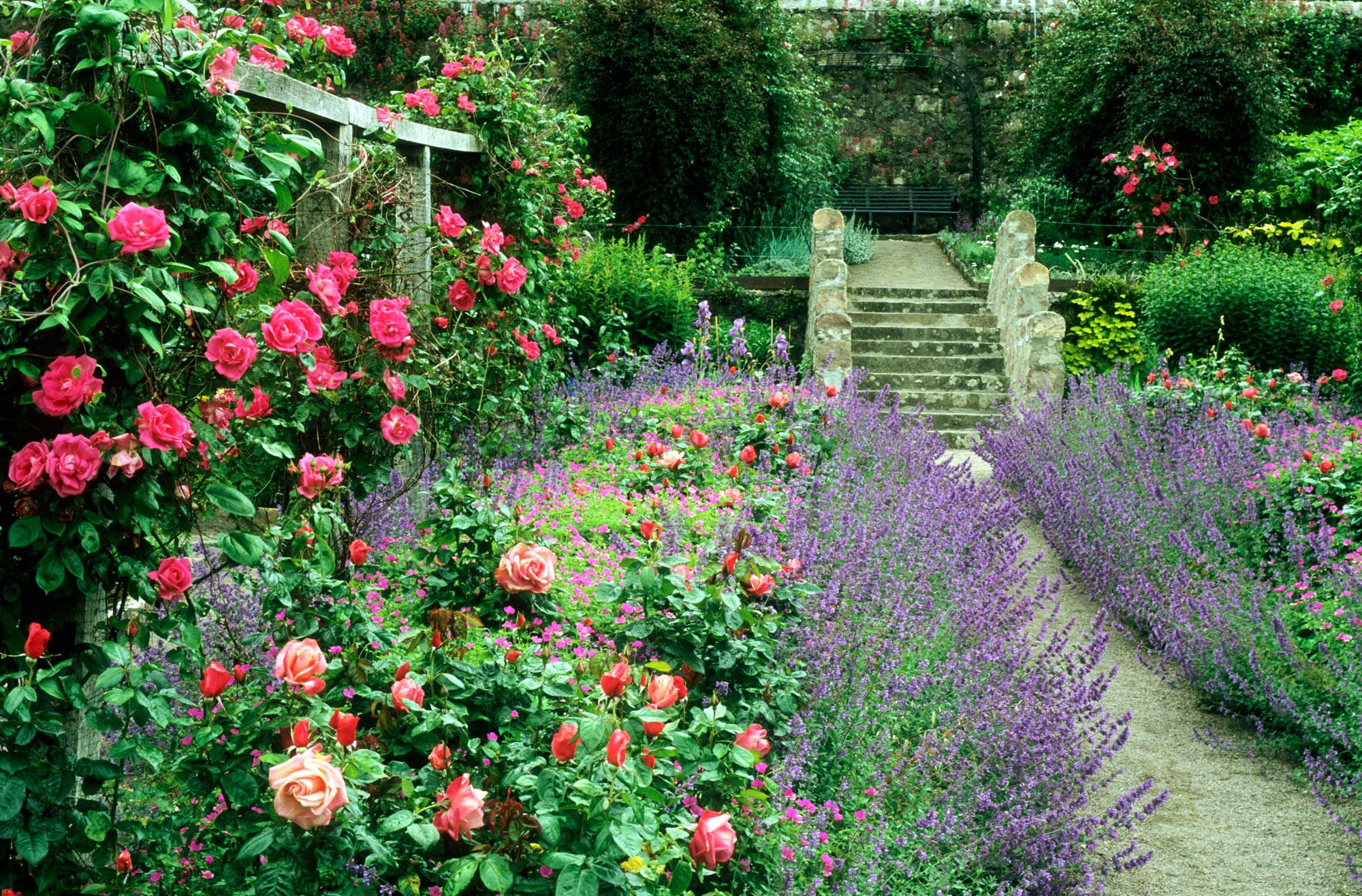 Come Fare Un Giardino Inglese come creare un giardino in stile cottage   shabby chic mania